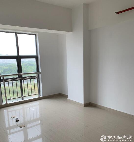 黄陂三里桥街,4320㎡独栋厂房出售,首付3成-图4