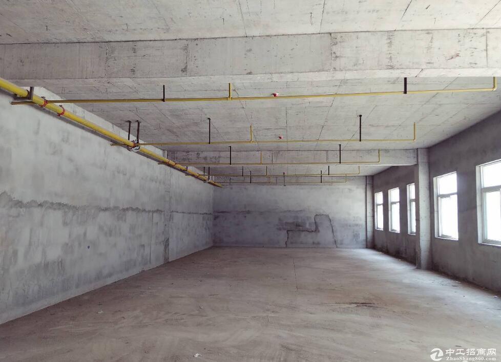 黄陂武湖,5974㎡独栋厂房出售,升值空间大