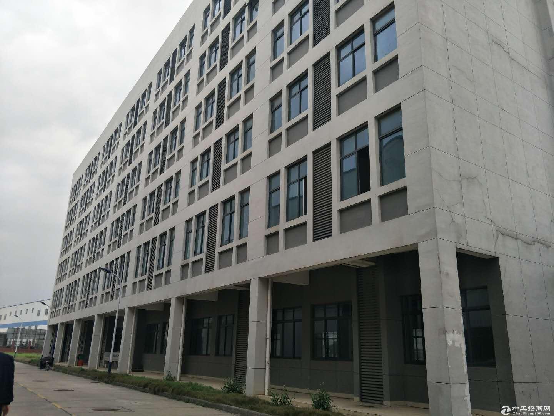 蔡甸工业园区大型钢结构单体库15000平方出租,可仓库,可生产