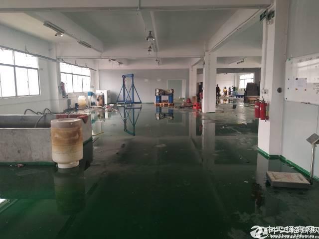 松岗燕川原房东红本厂房楼上550平米厂房出租