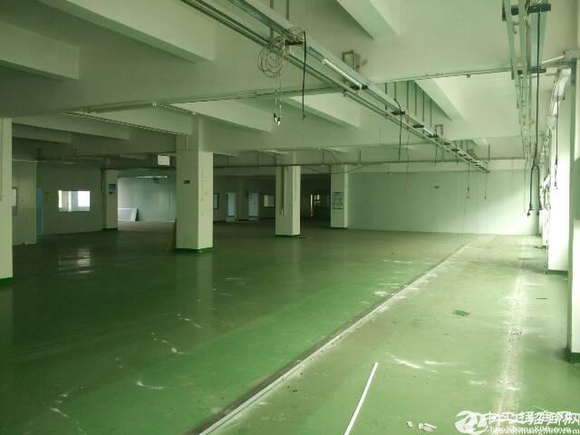 宝安西乡臣田工业区楼上厂房410平米招租;