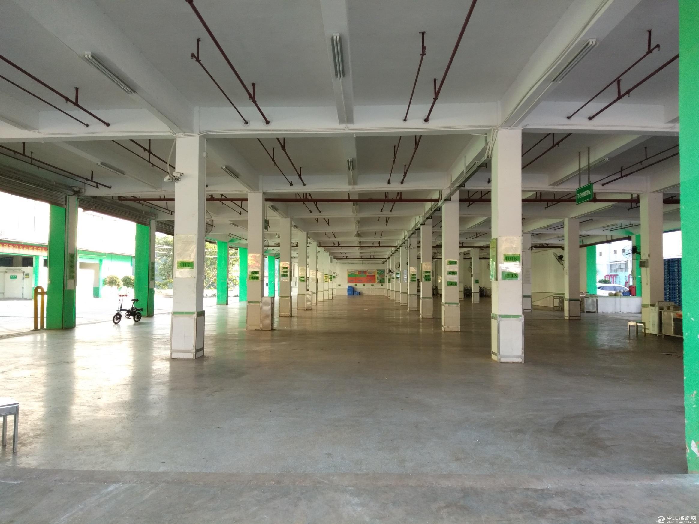 龙华原房东独院1万平米实际面积出租带红本
