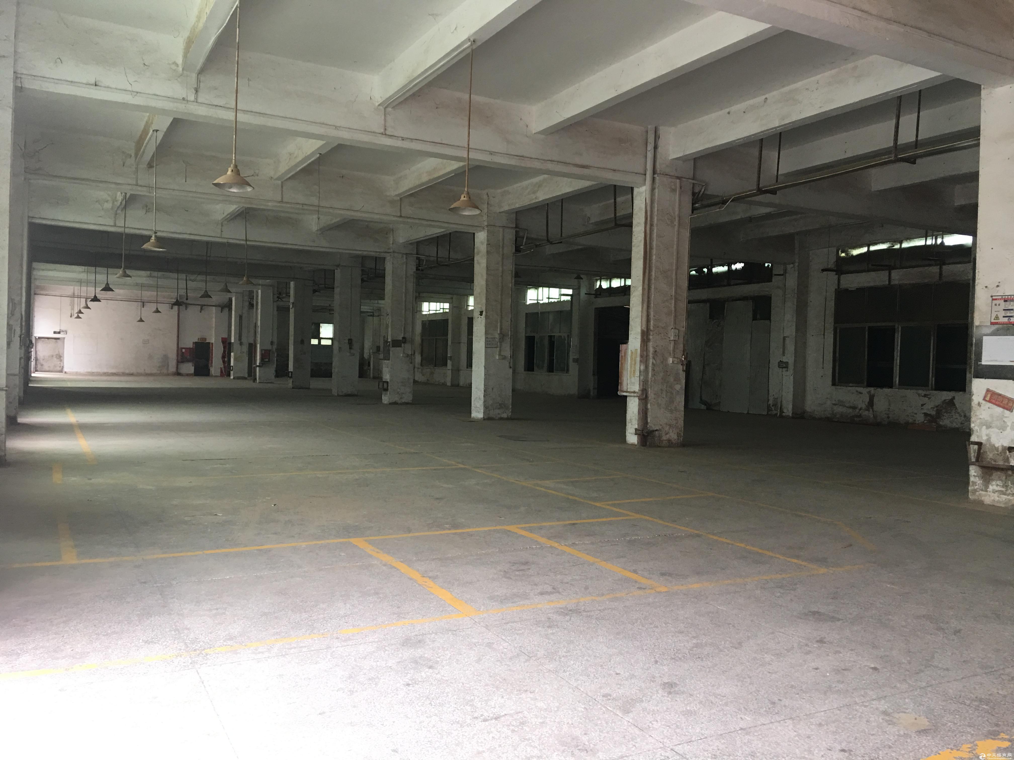 惠阳区新圩镇标准厂房独门独院  大小可分租