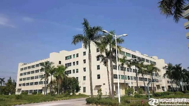 沙田镇新出豪华装修楼上1200厂房出租 有环评