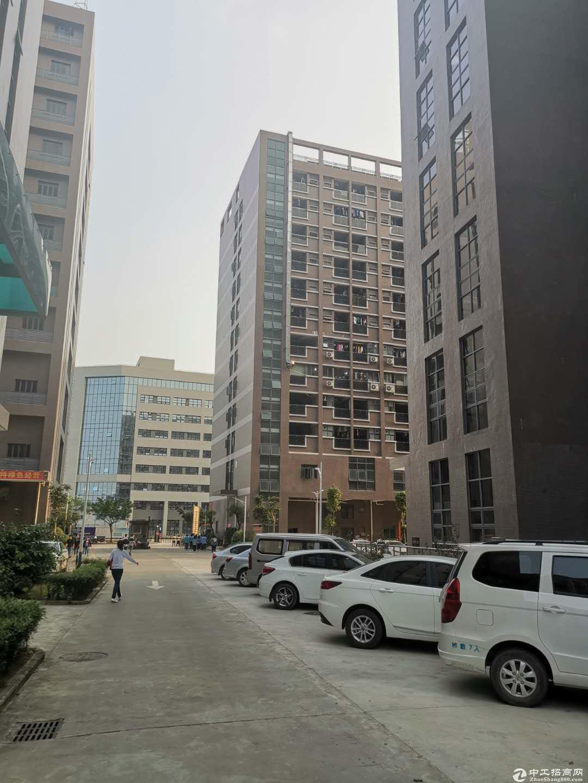 街道占地26413.21㎡,建筑92446㎡红本厂房出售