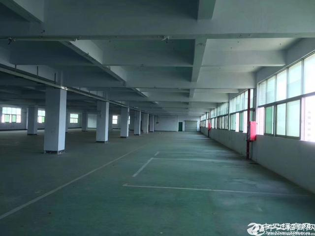 公明田寮塘尾楼上1500平装修厂房出租