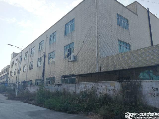 [龙岗厂房]深圳龙岗坪地独院厂房出售