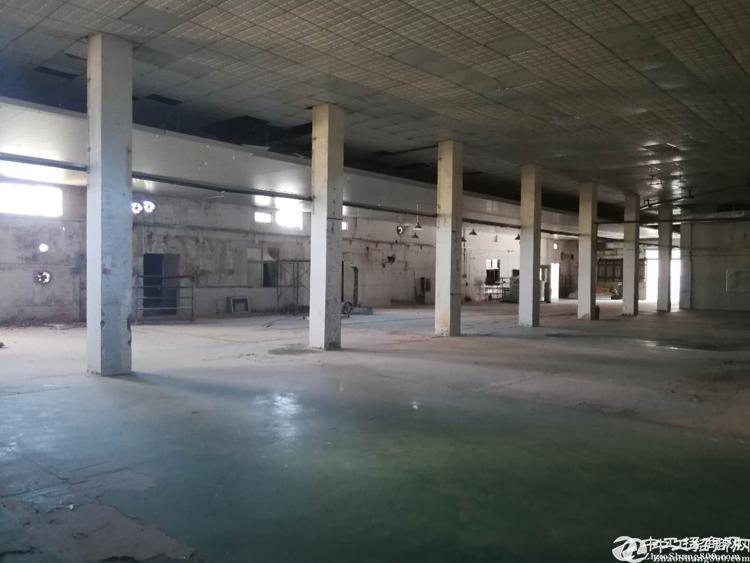 [碧岭厂房]横坪路边工业园6米钢构厂房1500平出租有办公室
