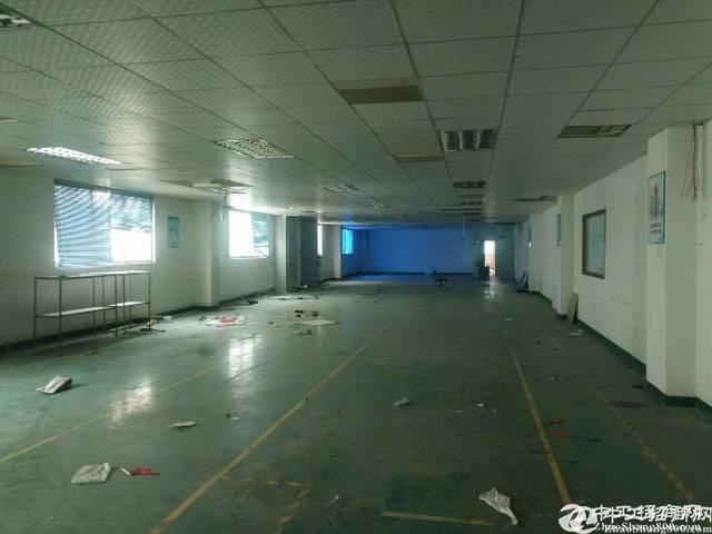 西乡固戍676平带装修标准厂房出租;