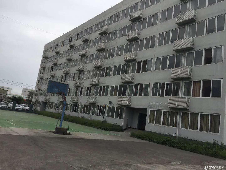 黄陂武湖全新标准1209平厂房出售,享政府补贴