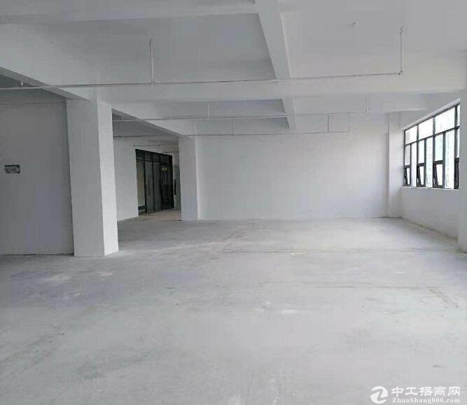 黄陂三里桥街优质标准厂房出售,1200平,配套齐全!-图3