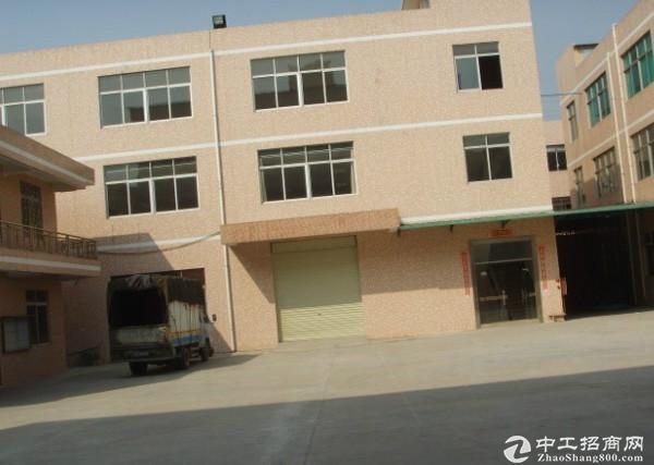 沙田镇独门独院厂房总面积7000平米带消防喷淋出租.