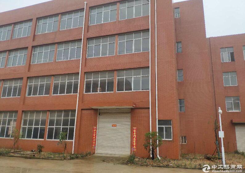 阳逻经济开发区独栋框架厂房四层2413平米出售