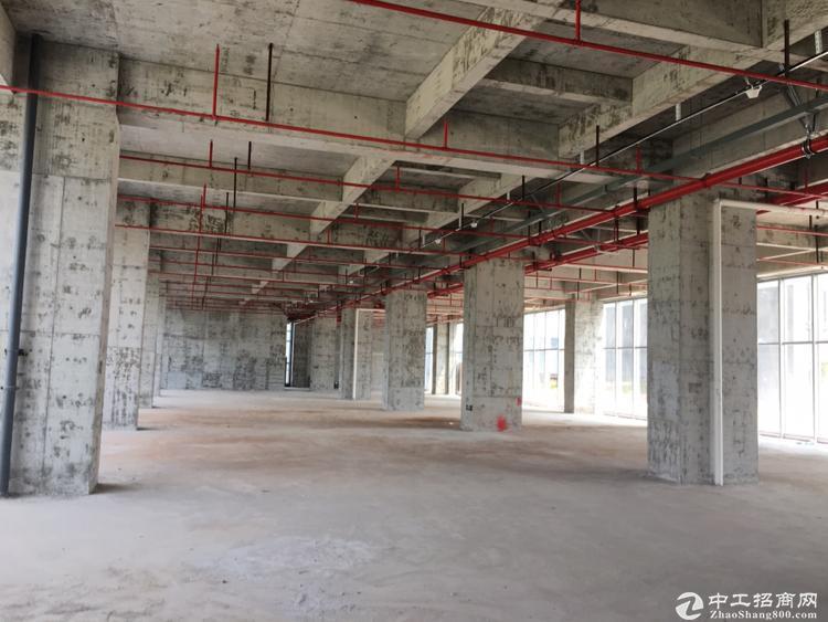 坪山全新原房东红本厂房1463平米实际面积出租