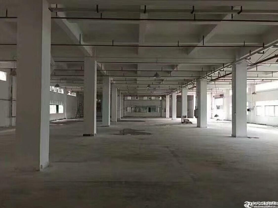西乡鹤洲一楼2300平大小分租;
