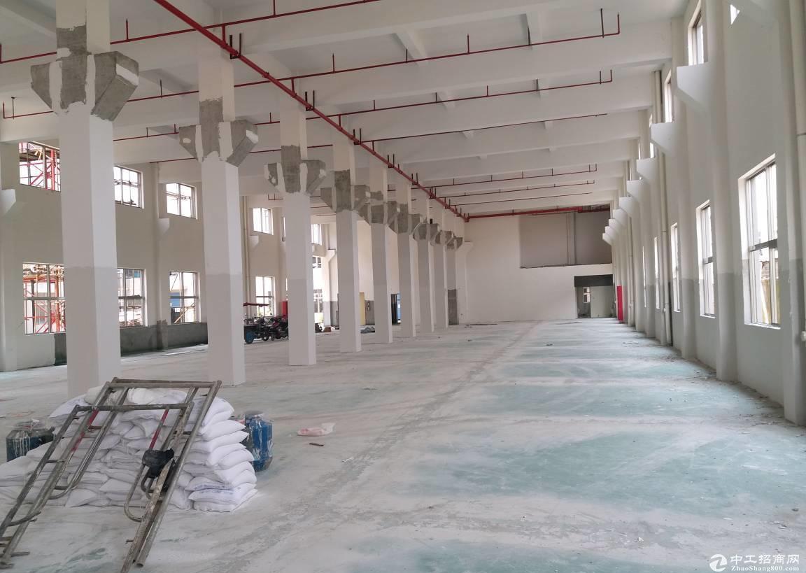 开发区6000平方独门独院单层厂房,可分租