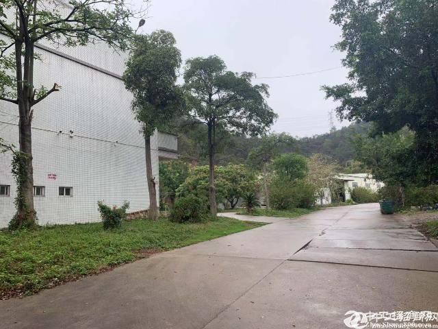 [厂房出售]高速路口厂房,占地5000平方,建筑6500平