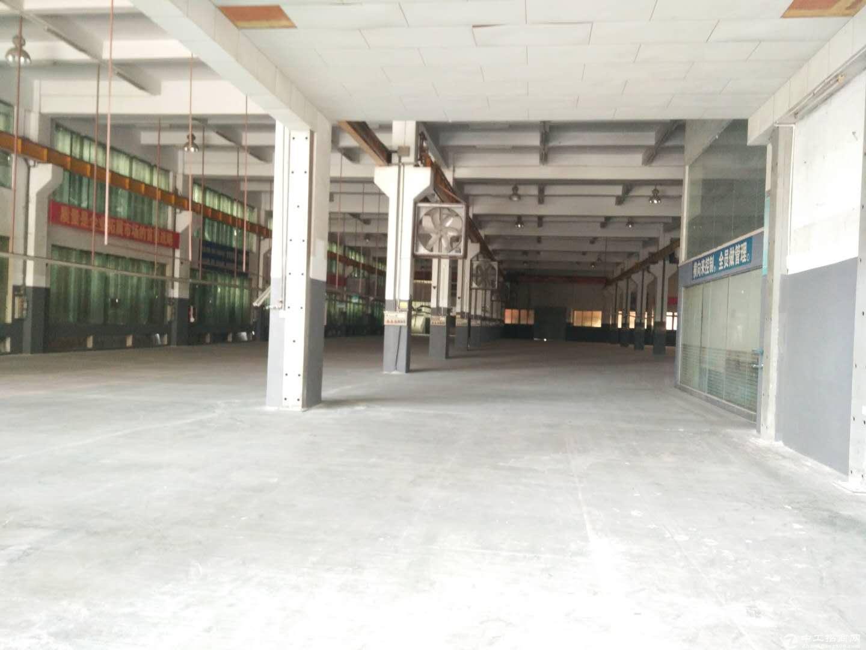沙田镇新空出楼上1500平精装修厂房 可分租