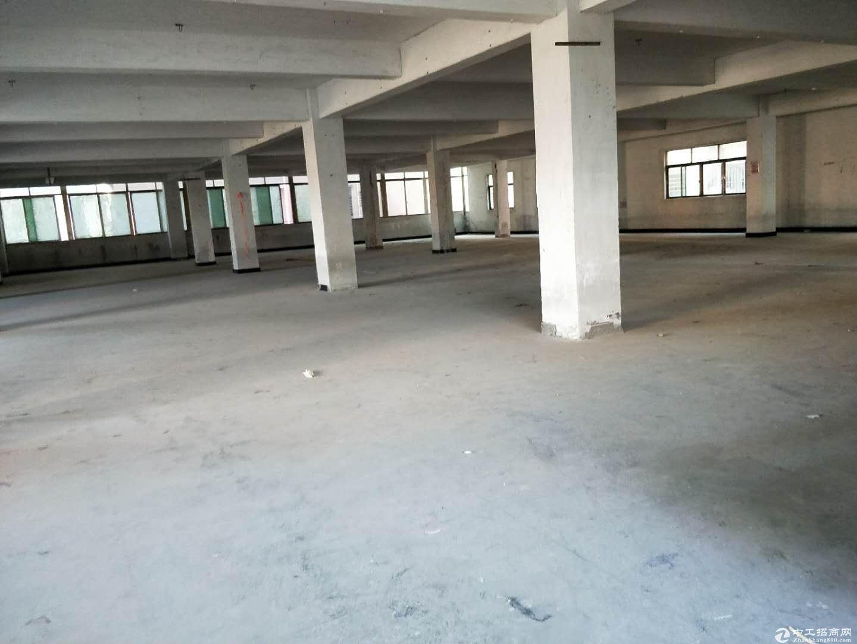 沙田镇厂房出租二楼1500平方现成办公窒;