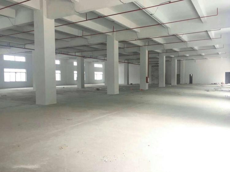 沙田厂房出租二楼1500平方现成办公窒''