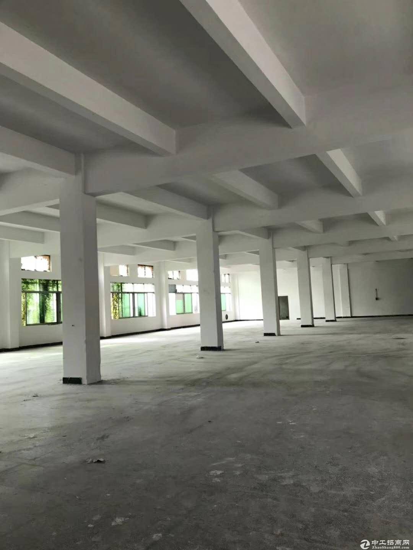 沙田镇工业区一楼1800平方米出租,可分租