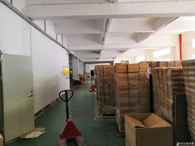 坑梓秀新原房东二楼1635.8平红本带装修厂房