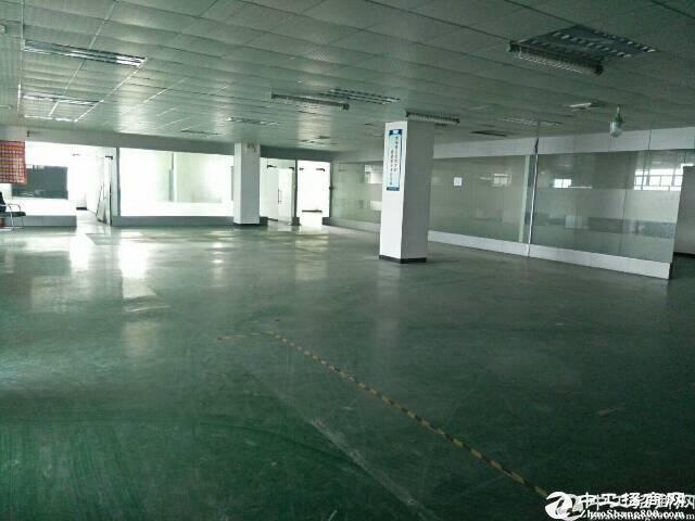 西乡九围工业区楼上345平厂房招租