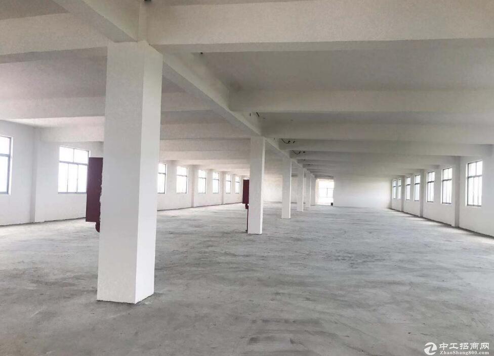 东西湖走马岭,独栋三层3600平,有证厂房出售