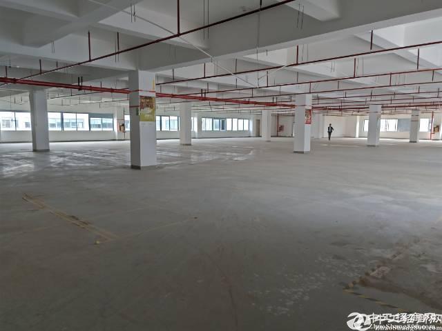 坪山大工业区原房东厂房3000平米出租可分租
