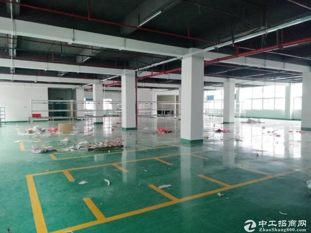 石岩塘头工业区3楼335平米带装修厂房出租;