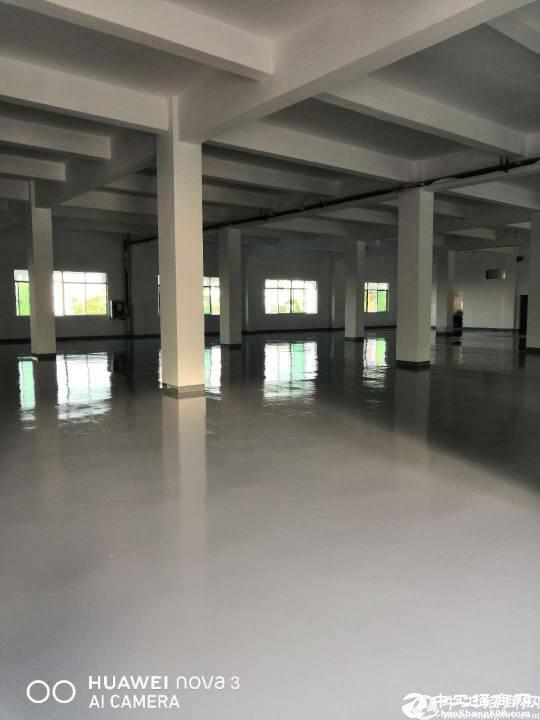 新出平湖华南城楼上3500平方带全新地坪漆厂房出租.