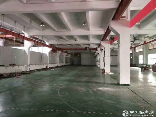 坪山中心原房东一楼厂房1100平方 带红本可分租