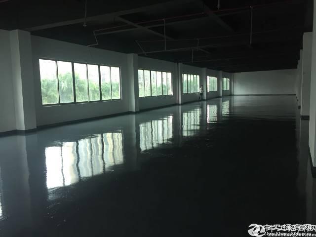 布吉李朗全新独栋独院厂房7800平出租可做企业总部