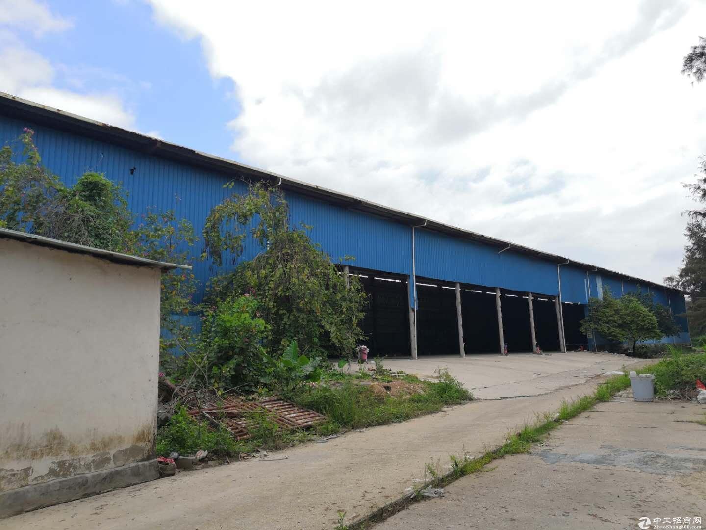 滴水11米超大空地独院3000平租金25可以做仓库······-图4