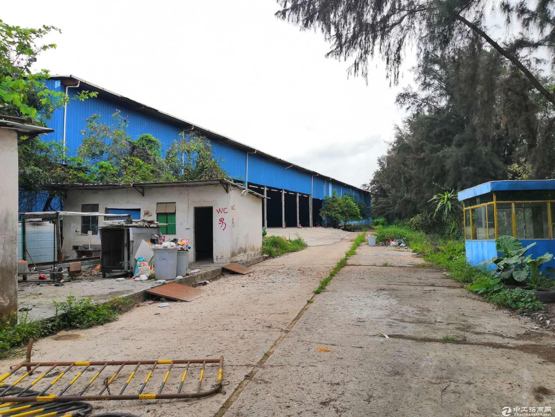 超大空地滴水11米独院3000平租金25可以做仓库·-图5