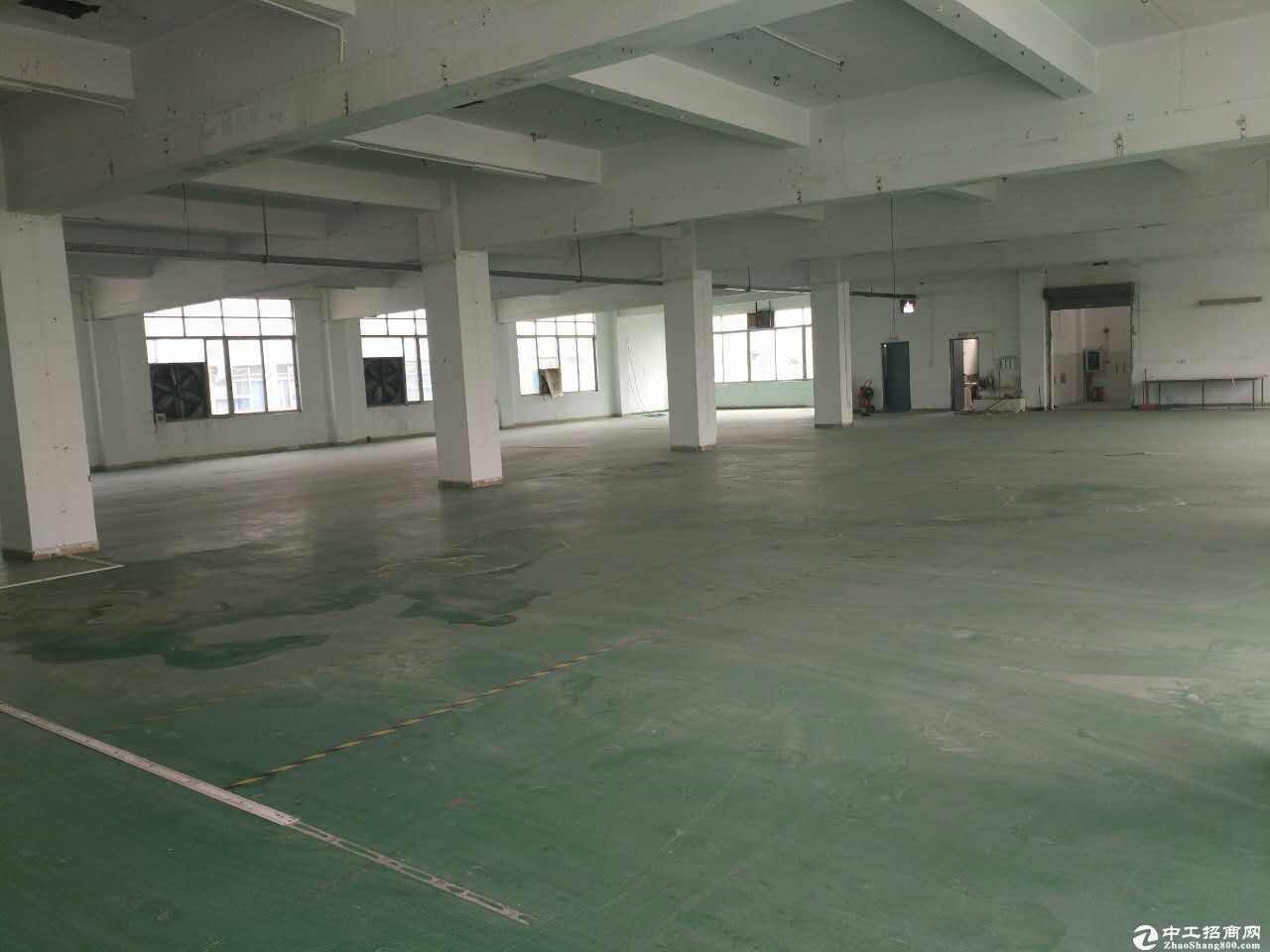 坪山坑梓新出楼上730平出租,原房东精装修带红本.