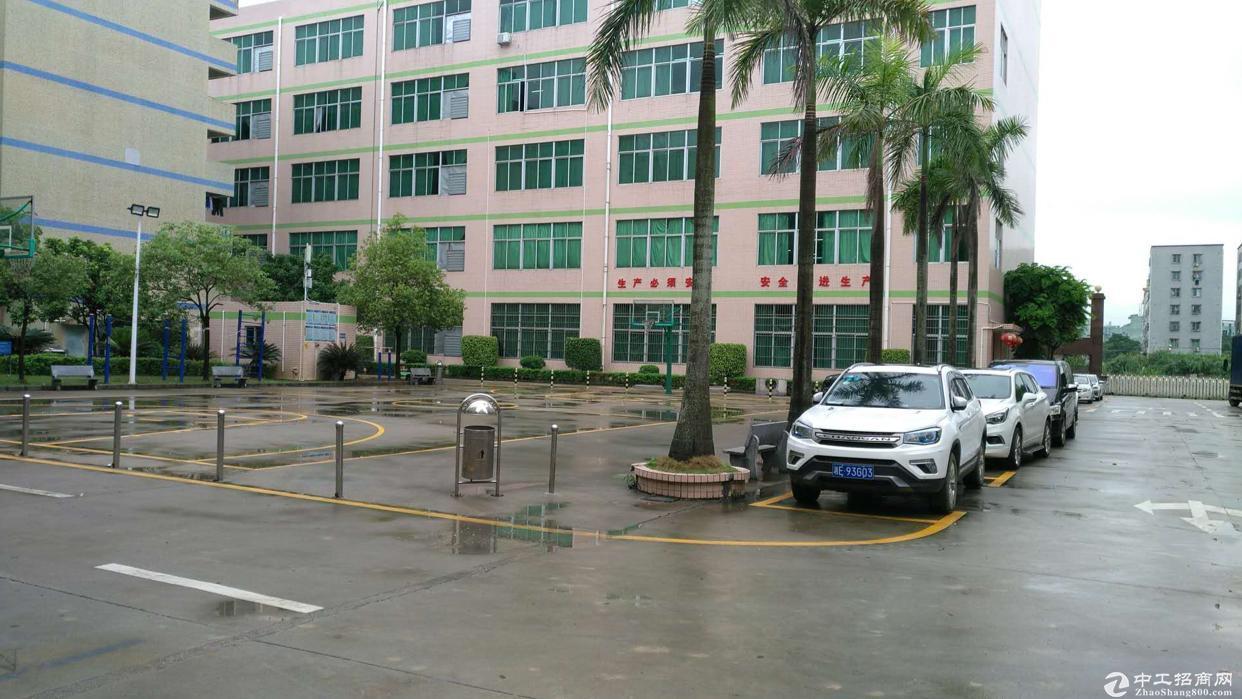 龙岗厂房出租中心城宝龙厂房800平才租15元每平