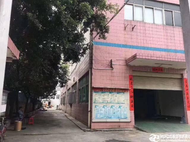 观澜福民带红本独院厂房出租,5500平四层带装修