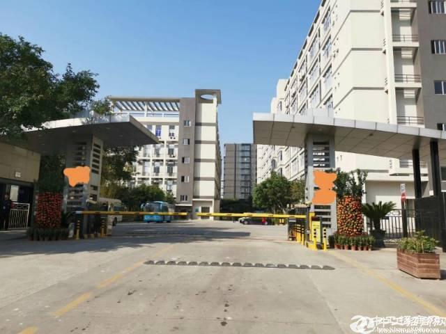 坪山坑梓一楼标准厂房出租2600平可分租高6米