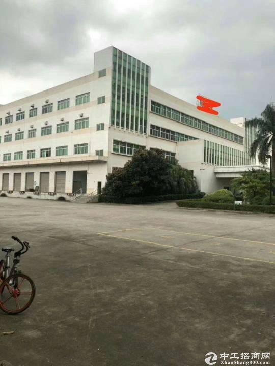 清溪镇三中附近一楼5200平可做仓库空地超大