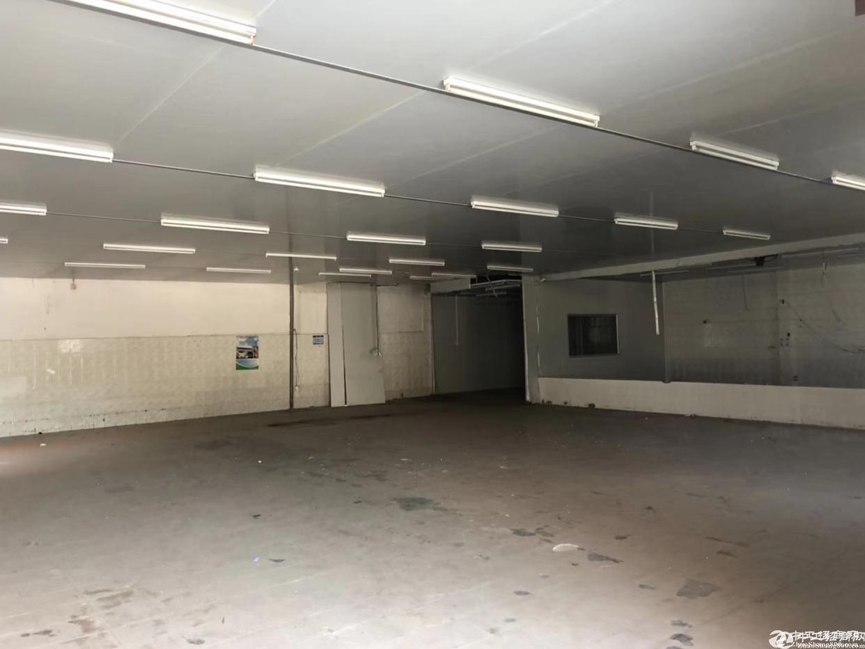 [横岗厂房]横岗安良独门独院带卸货平台带装修厂房出租1250平