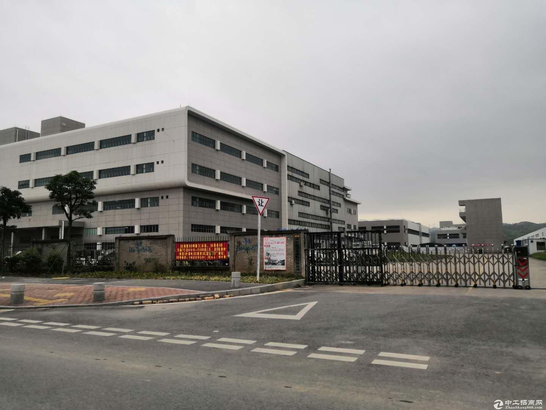 中堂全新国有证厂房出售