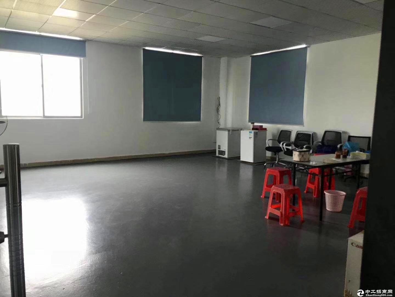 [布吉厂房]布吉恒通工业区3楼420平全新装修厂房出租.
