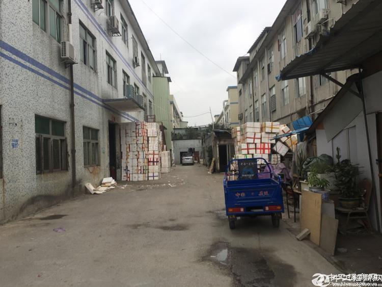 [平湖厂房]龙岗区平湖街道鹅公岭村委厂房一楼700平招租