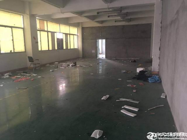 西乡九围1000平米原房东厂房无公摊