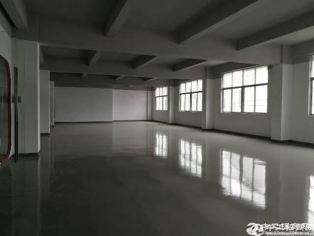 西乡黄田公园独栋厂房560平米价格实惠
