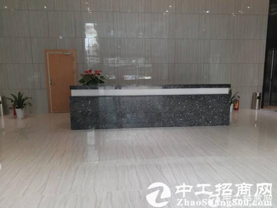 西乡鹤州原房东2400平米两层精装出租