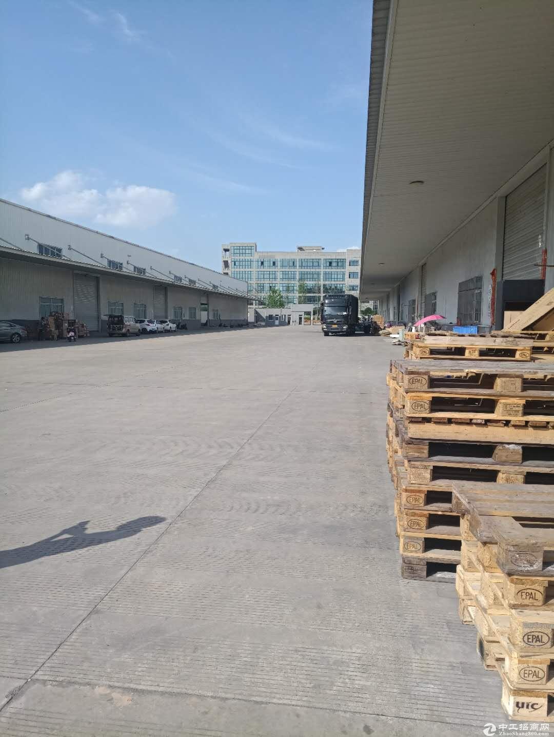 成都龙泉3000平厂房出租,标准单层钢结构-图3
