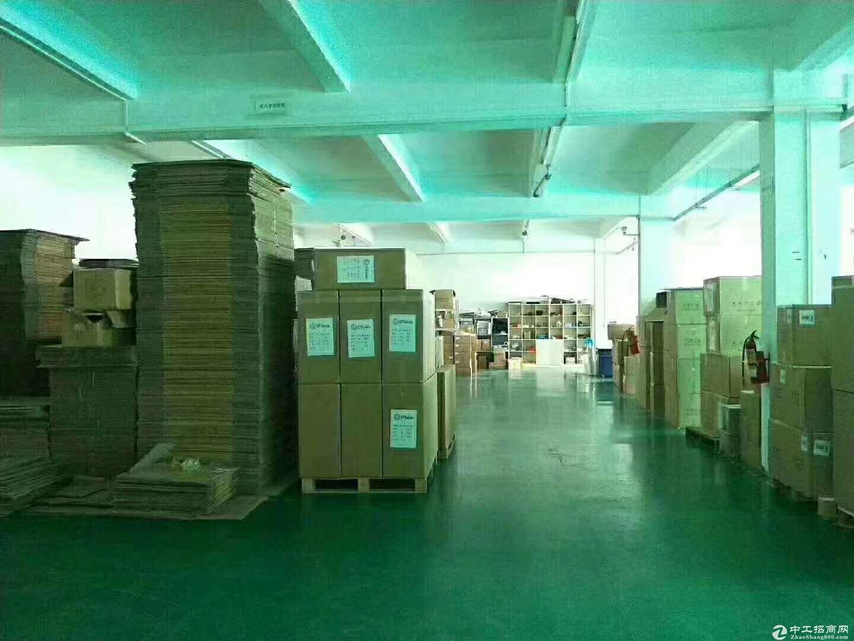 沙井98工业园区新空带豪华装修1080平米厂房-图3