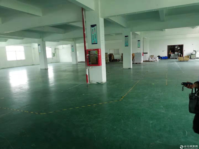 原房东高新园区有红本整栋12500平米带精装修